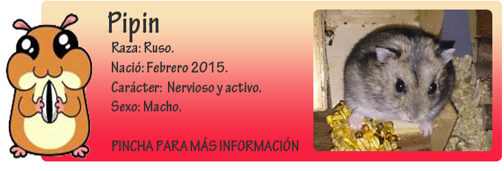 http://almaexoticos.blogspot.com.es/2015/03/pipin-abandonado-en-la-perrera-en.html
