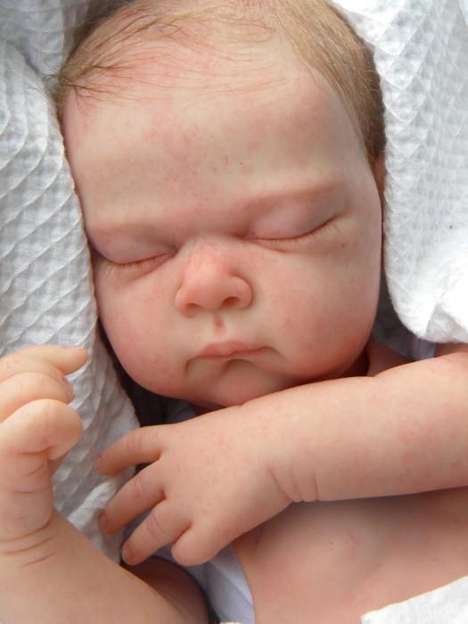 Куклы младенцев от Glenda Ewart 24