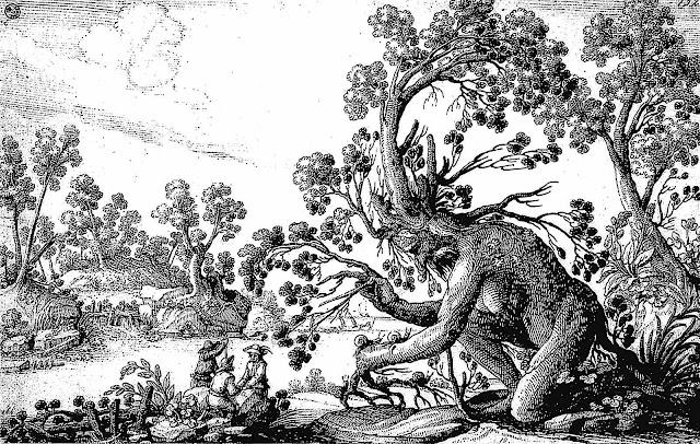 Ciafferi illustration