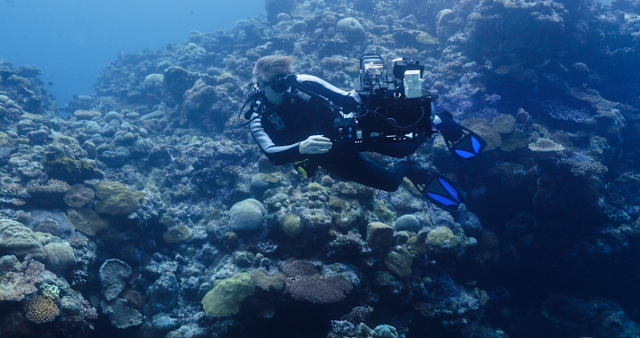 """Pushing Visual Boundaries Deep Under the Sea, On Land and Up into Space, Canon U.S.A. Unveils New """"Canon See Impossible"""" Videos"""