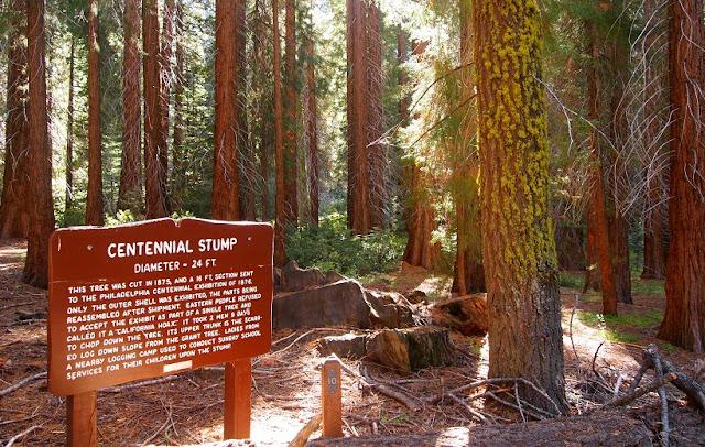 Parque Nacional da Sequoia na Califórnia