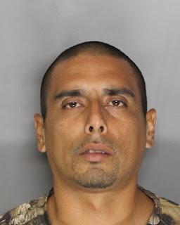 Elk Grove Police Thwart In-progress Theft, Arrest Probationer Suspect