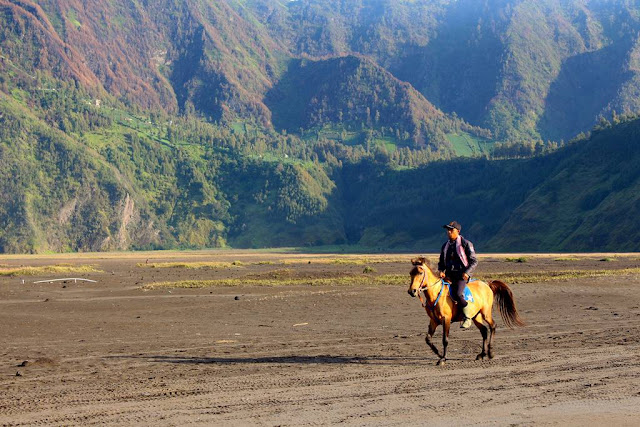 [FOTO] Para Penunggang Kuda Bromo