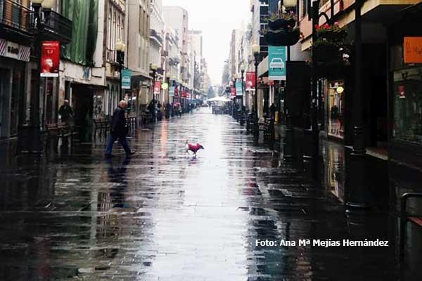 Lluvia viento y la bajada de temperaturas  hasta mayo en Canarias