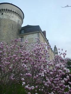 fleur chateau de tours indre et loire touraine balade visite