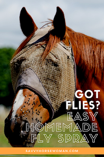 Homemade Fly Spray for Horses | Apple Cider Vinegar Fly Repellent | DIY Fly Spray