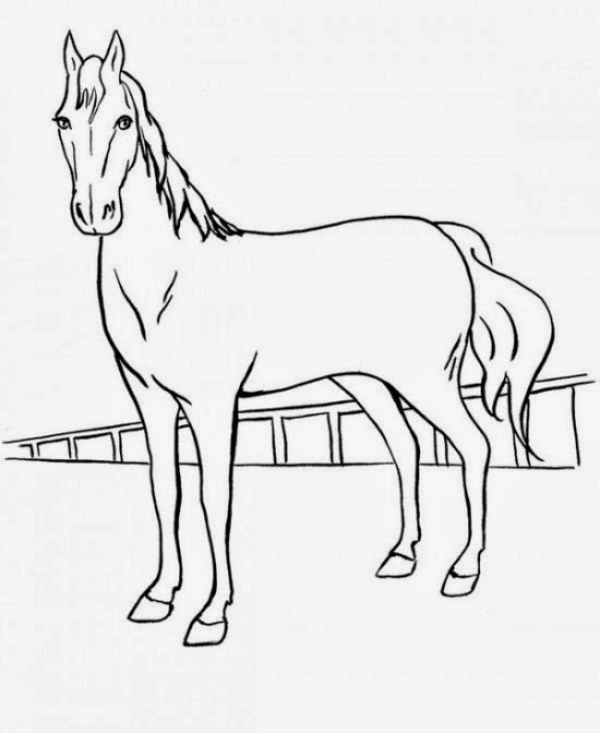 simple horse coloring pages | Printable Coloring Pages: Horses printable coloring pages