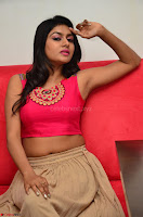 Akshita super cute Pink Choli at south indian thalis and filmy breakfast in Filmy Junction inaguration by Gopichand ~  Exclusive 098.JPG