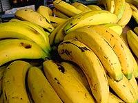 Plátanos (Bananas)