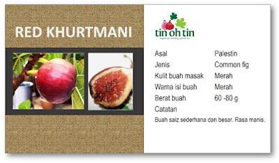 ebook pokok tin fig