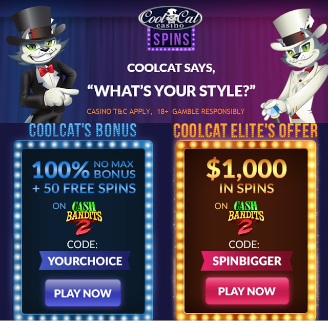 Cool Cat Casino 2 hot offers: 100% Bonus and 50 Free Spins or 40 Free Spins worth $1,000