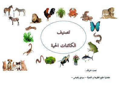 مذكرات المقطع التعلمي تصنيف الكائنات الحية كاملا للثانية متوسط