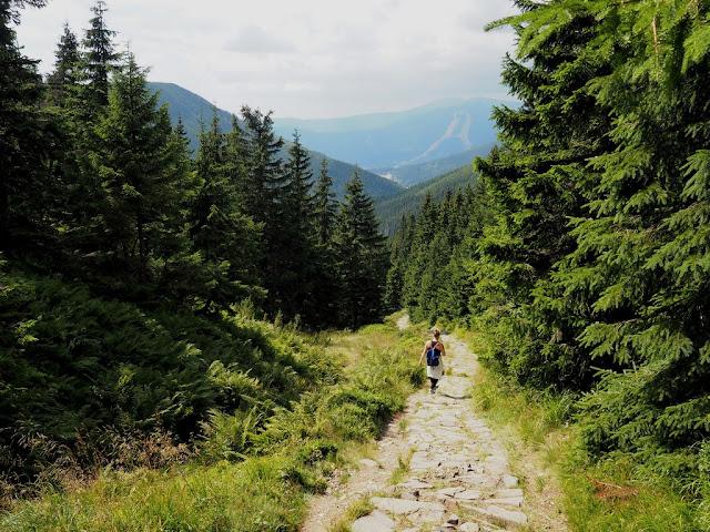 Špindlerův mlýn, příroda, procházka, trek, léto, přátelství