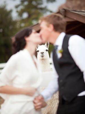 Una llama se hace presente en esta boda.
