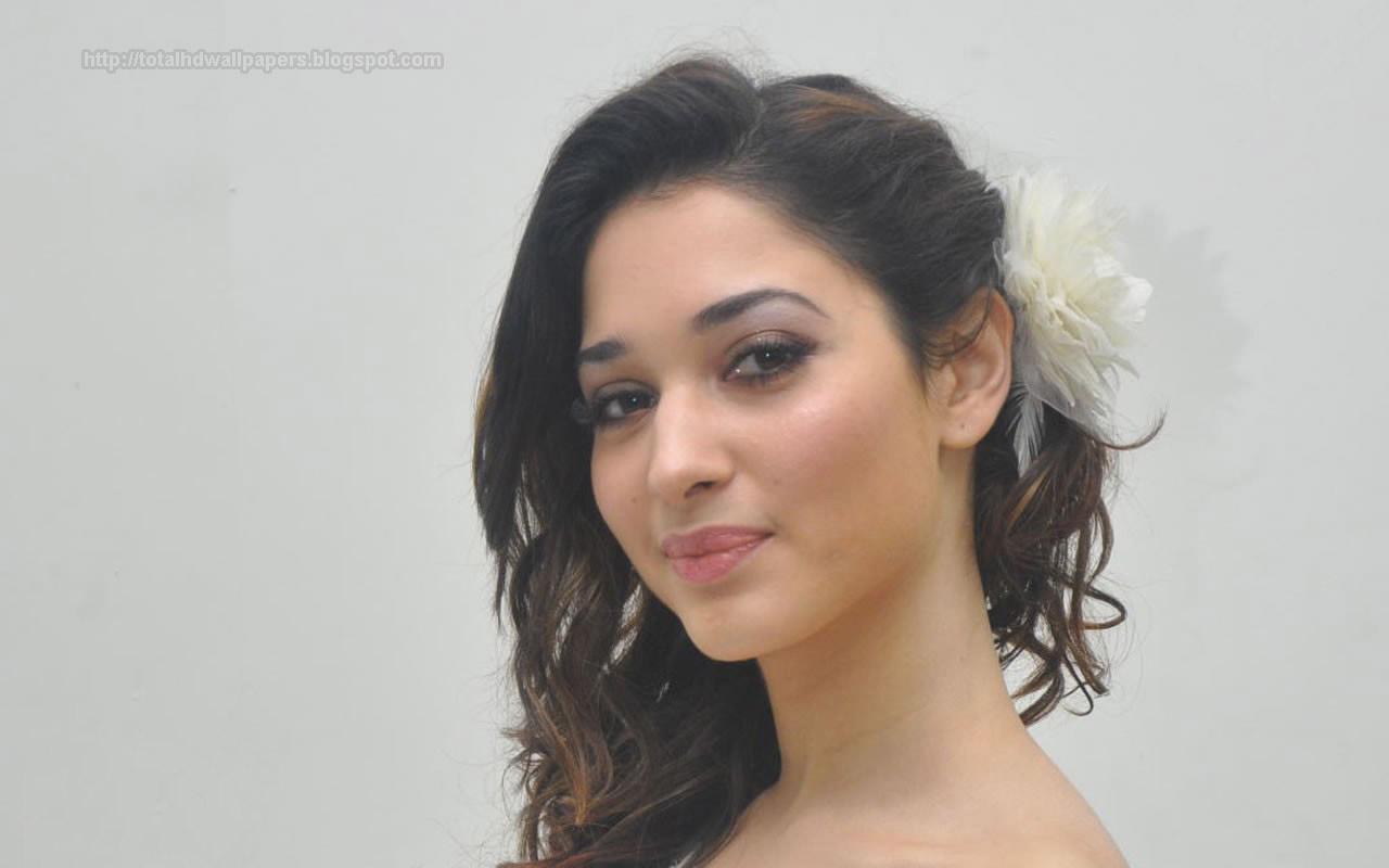 Bollywood Actress Hd Wallpapers Hollywood Actress Hd -8537