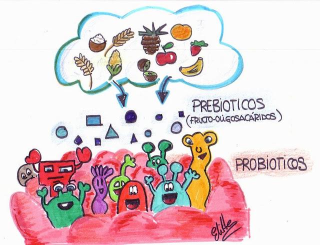Resultado de imagen de probióticos y prebióticos