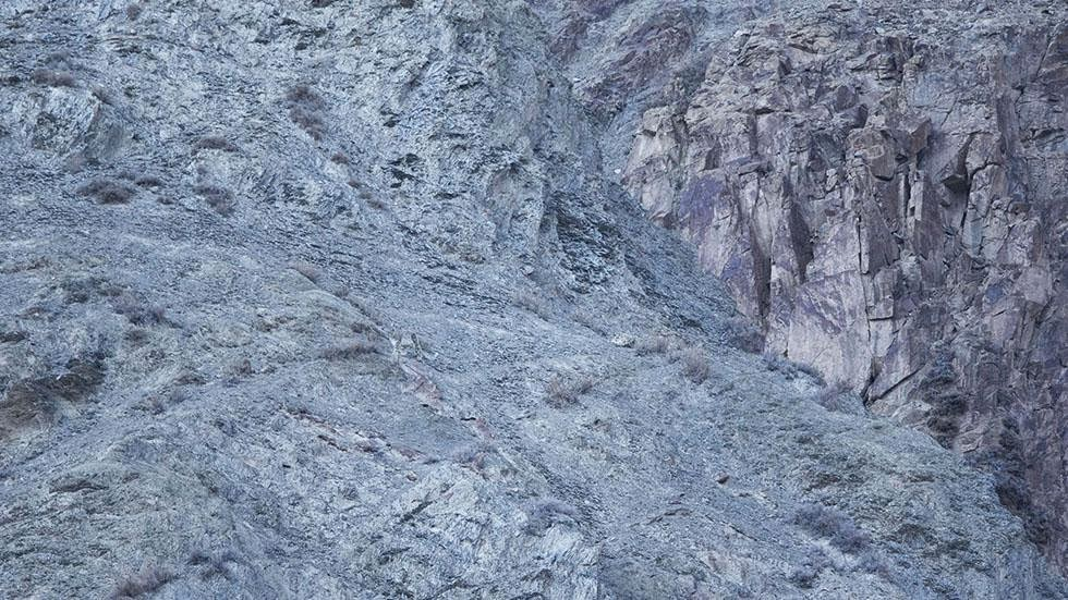 A snow leopard is seen camouflaged against a mountain near the Indian Himalayas. - Can You Spot the Snow Leopards in These Photos?