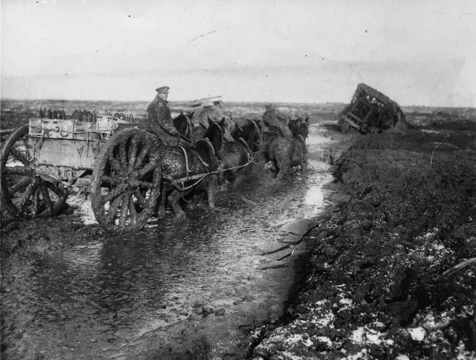 Horses haul ammunition forward in deep mud along the Lesboeufs Road outside Flers. November, 1916.