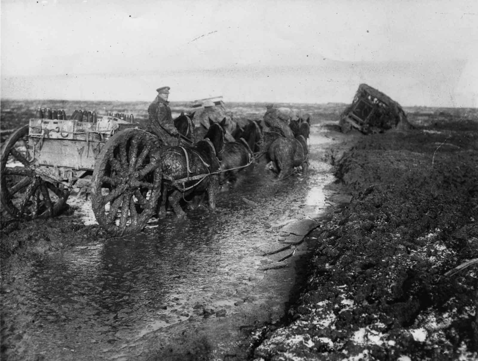 Los caballos transportan municiones hacia adelante en lodo profundo a lo largo de Lesboeufs Road a las afueras de Flers. Noviembre de 1916.