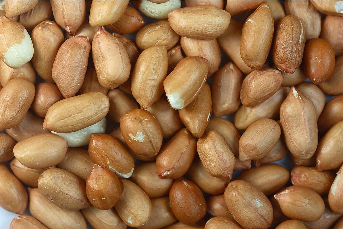 Manfaat mengkonsumsi makan tempe bagi tubuh dan kandungan gizinya