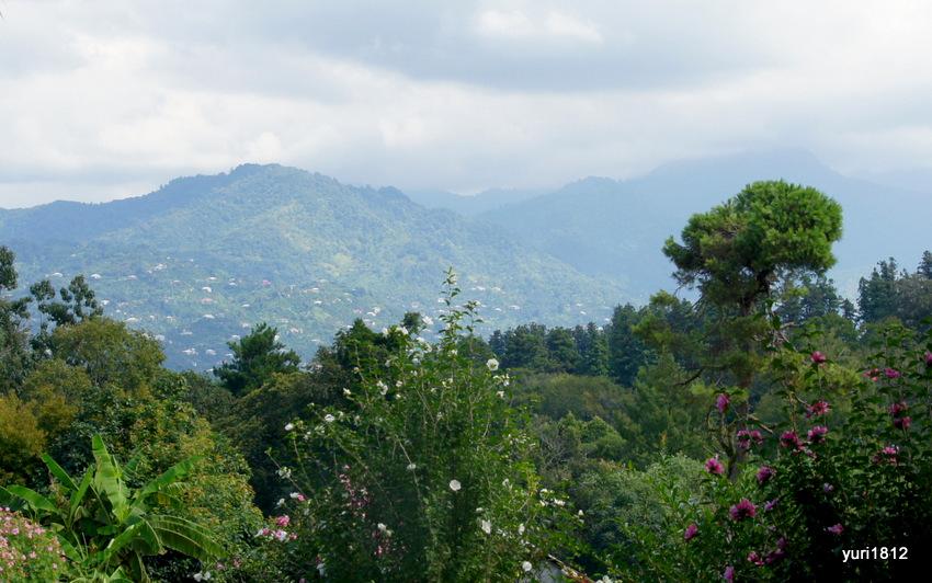 Горы в окрестностях Батуми