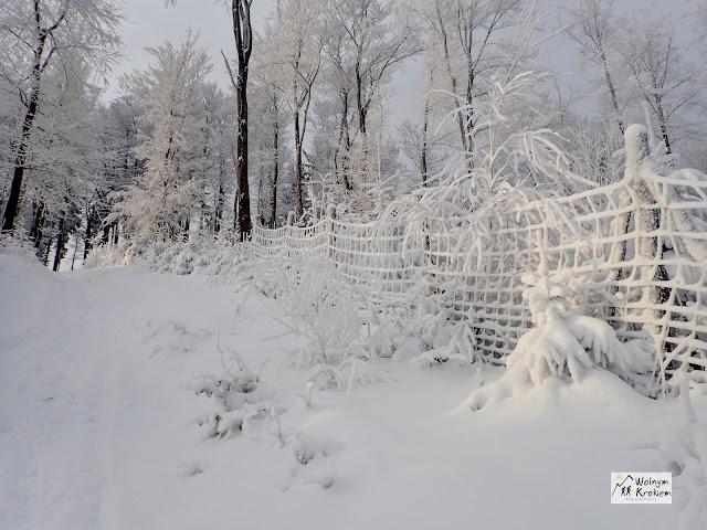 Śnieg w górach Kalenica