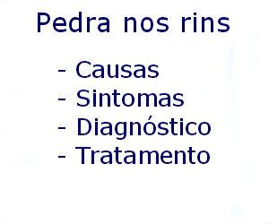 Pedra nos rins causas sintomas diagnóstico tratamento prevenção riscos complicações