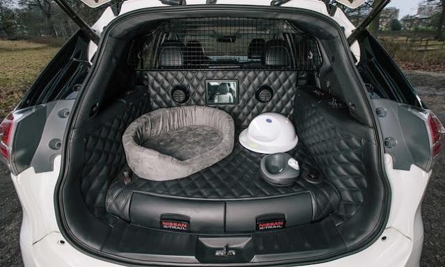 un viaje de perros nissan desarrolla el x trail 4dogs. Black Bedroom Furniture Sets. Home Design Ideas