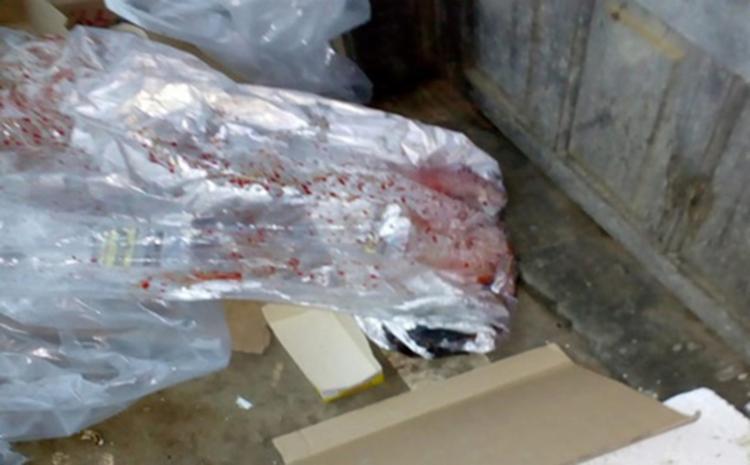 Recém-nascido é encontrado em meio ao lixo em Brejões - Portal Notícias de  Alagoinhas 359457ac9c9cb