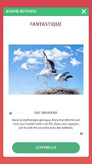 Quiz d'amour en Français FR%2BScreenshot%2B3