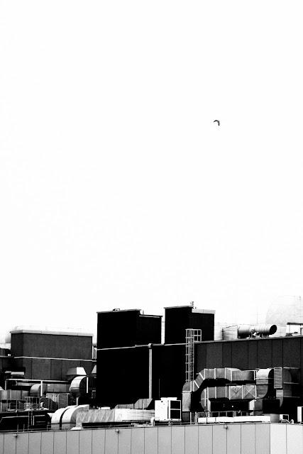 Galeria Centrum, Katowice. Koncepcyjna fotografia krajobrazu. Fotografia odklejona.  fot. Łukasz Cyrus