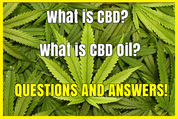 question and answer, What is CBD? What is CBD Oil