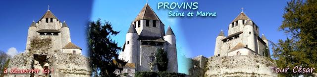 http://lafrancemedievale.blogspot.fr/2014/10/provins-77-la-tour-cesar.html