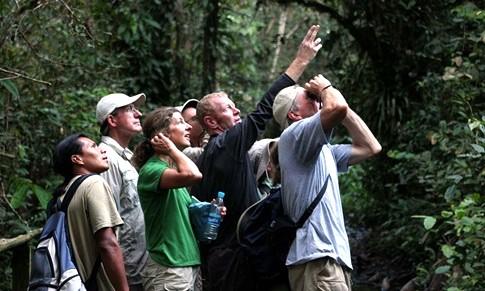 Ecuador turismo destinos turísticos para observar aves