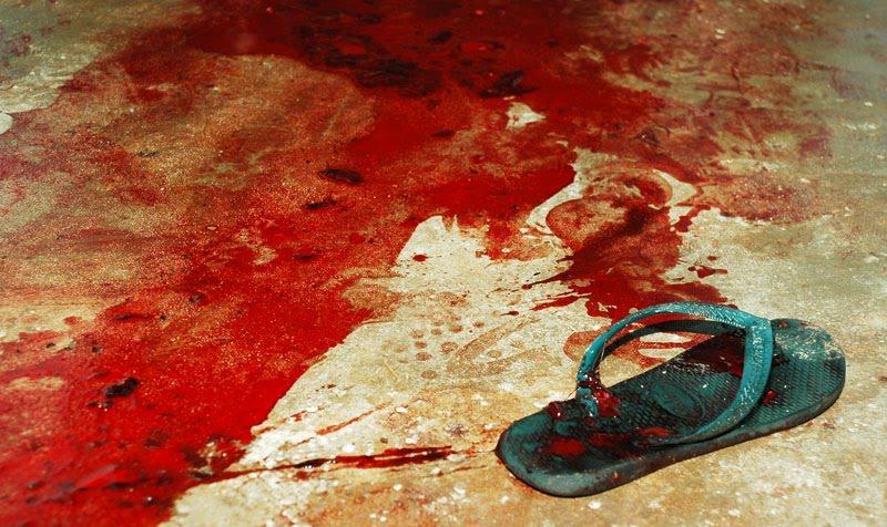 Resultado de imagem para ilustração de bala e sangue