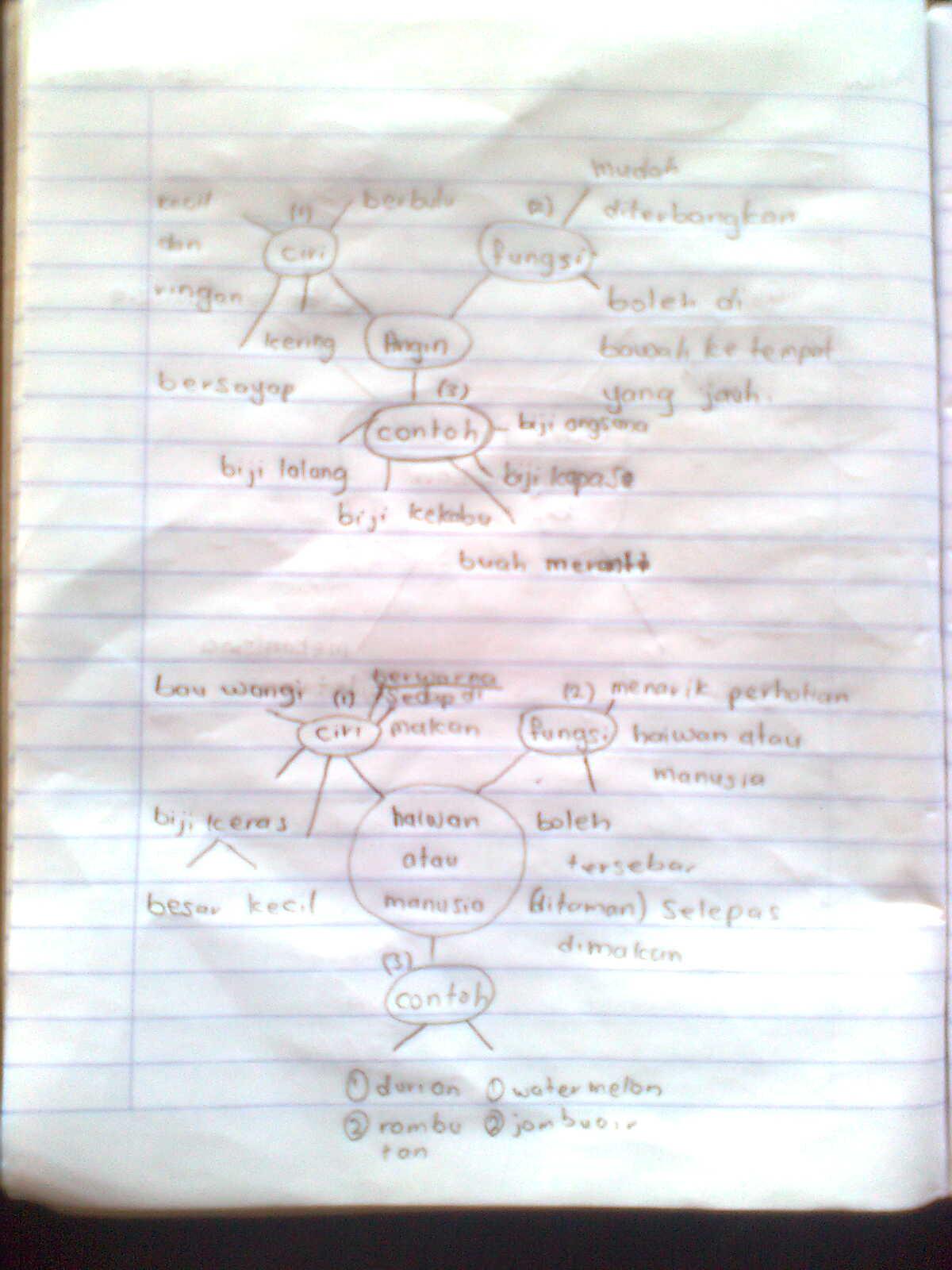 LoNgK@i_2U (*_*): Sains tahun 5 Kemandirian Tumbuhan (peta ...