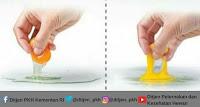 ciri ciri telur ayam asli dan ciri telur palsu