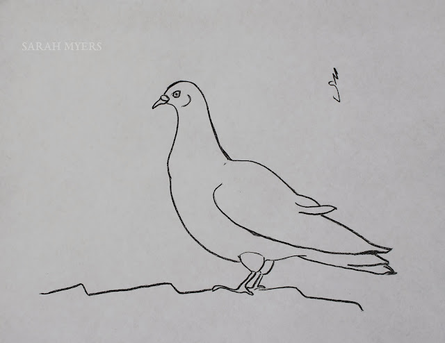 charcoal, bird, pigeon, roof, tiles, animal, alert, sarah, myers, art, drawing, study, arte, dibujo, dove, paloma, artwork, sketch, simple, minimal, minimalist