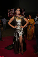 Shreya Saran in Skin Tight Golden Gown ~  Exclusive 044.JPG