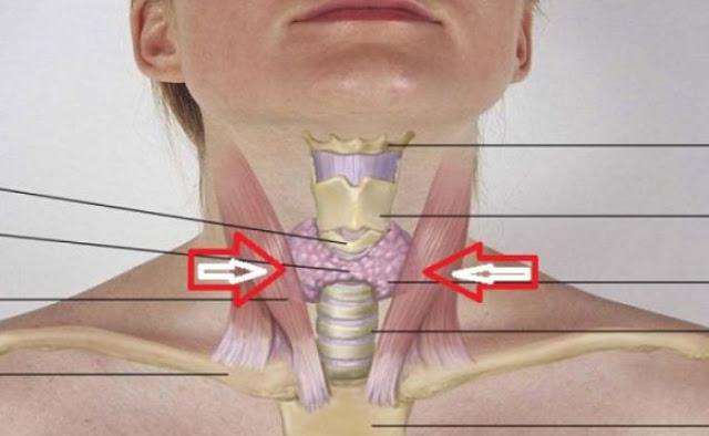 remediu pentru glanda tiroida