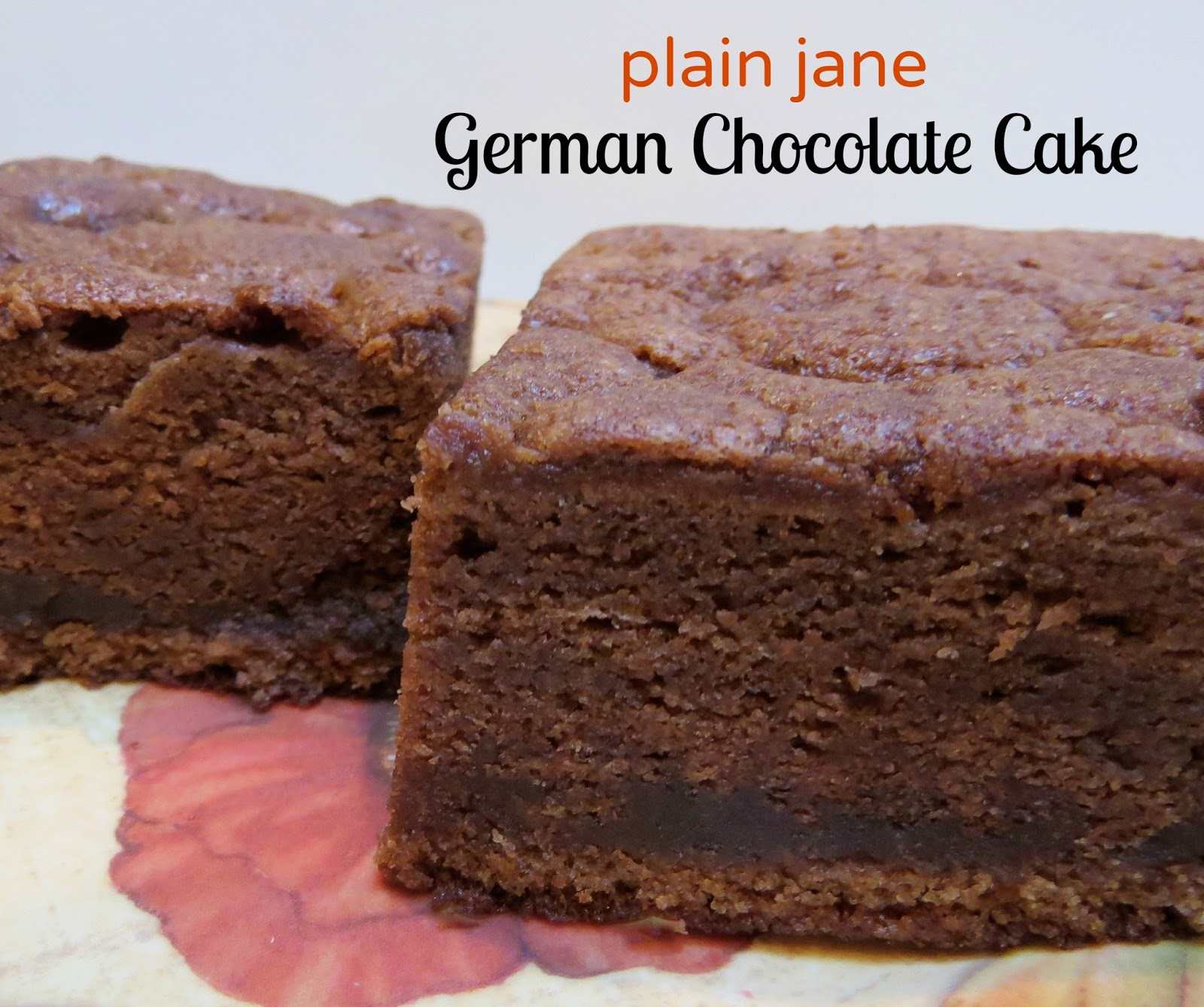 """Plain Jane"" German Chocolate Cake -- It's Simply Delicious! By Ms. Toody Goo Shoes"