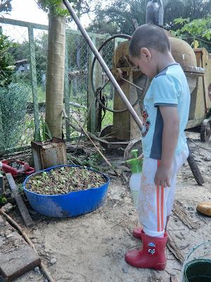 Seronoknya luangkan masa ajar anak-anak berkebun