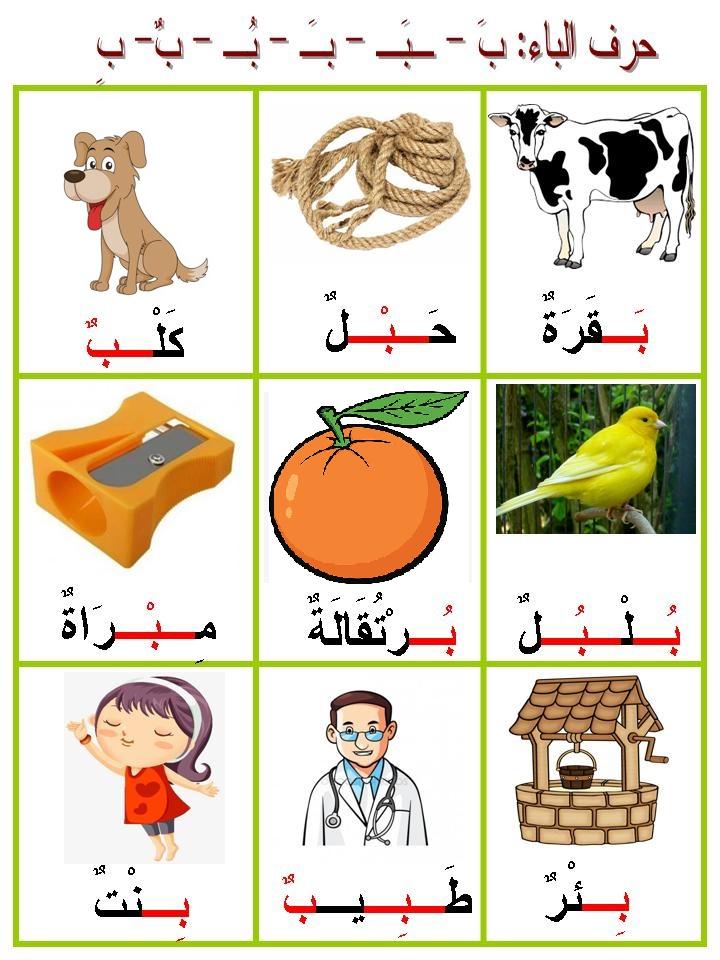 كلمات بحرف الباء بالصور للاطفال الصغار