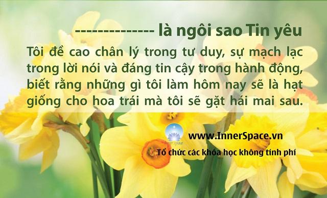 TOI-LA-NGOI-SAO-TIN-YEU