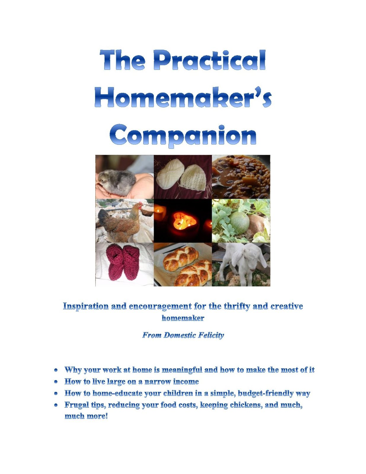 My e-book - The Practical Homemaker's Companion