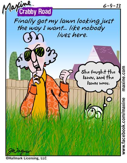 lawn maxine funny humor yard mower things hate broken mowing meme care mow garden jokes cartoon memes cartoons maintenance yes