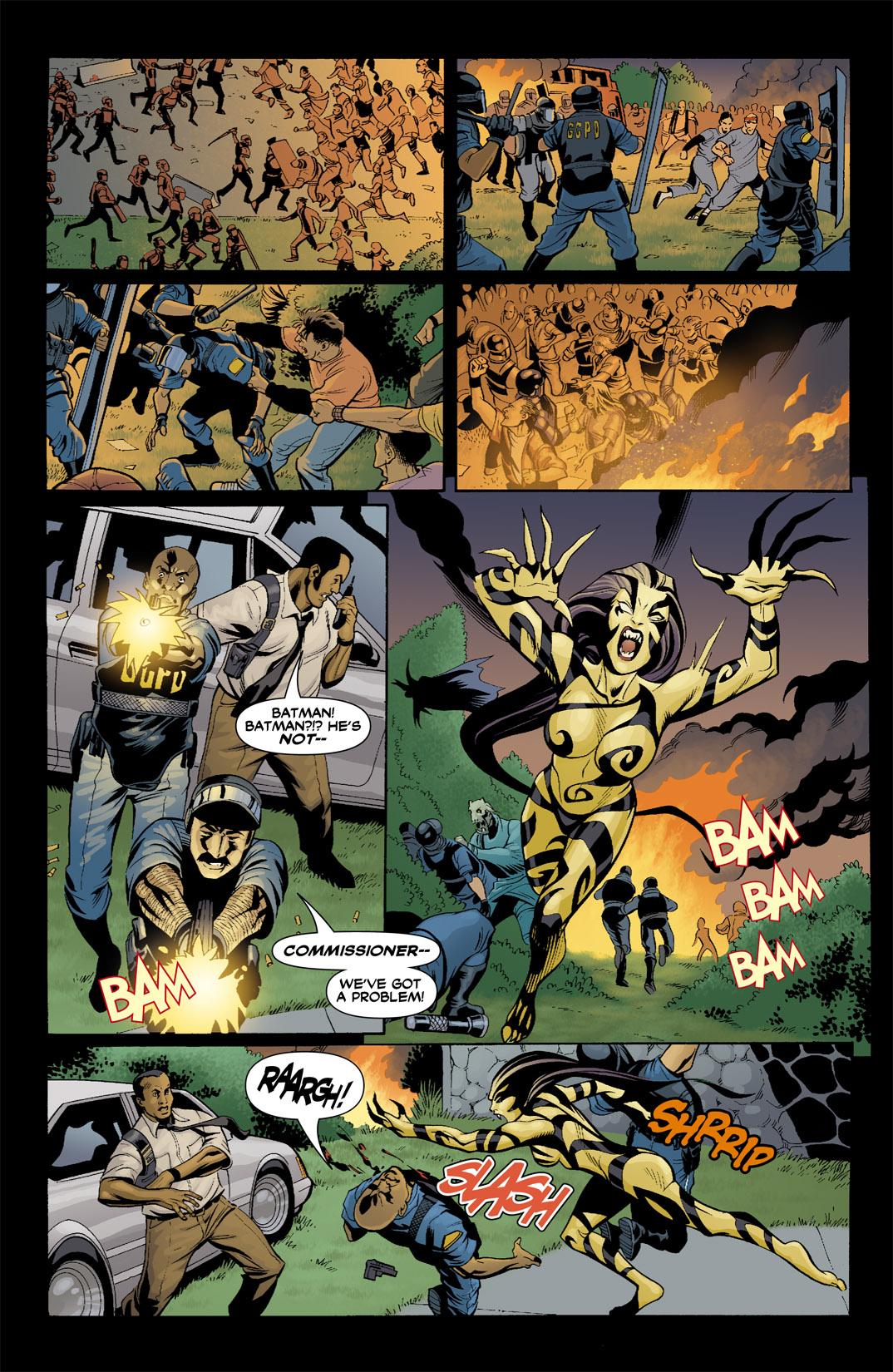 Detective Comics (1937) 799 Page 17