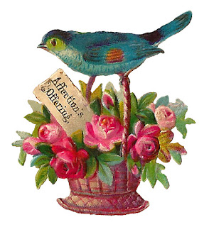 bird flower basket image digital download