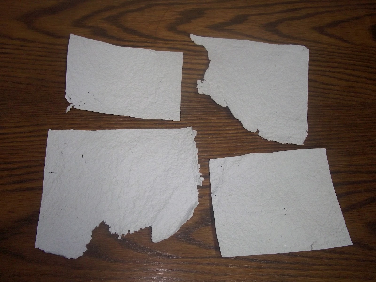 Making Homemade Paper from Trash- No Special Equipment