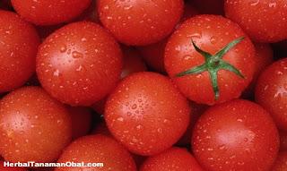 manfaat tomat untuk kesehatan, manfaat diet tomat, khasiat tomat untuk wajah, manfaat tomat untuk kesehatan dan kecantikan, manfaat dan khasiat buah tomat sebagai bahan obat herbal alami, manfaat tomat bagi kesehatan tubuh, manfaat dan khasiat tomat untuk menurunkan berat badan